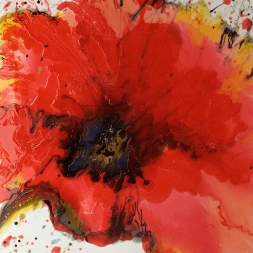 Painting called 'Imposing Poppy for sale in Totnes'